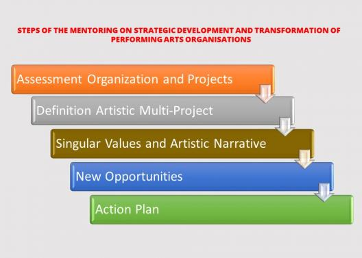 Mentoring on Strategic Development and Transformation Chart